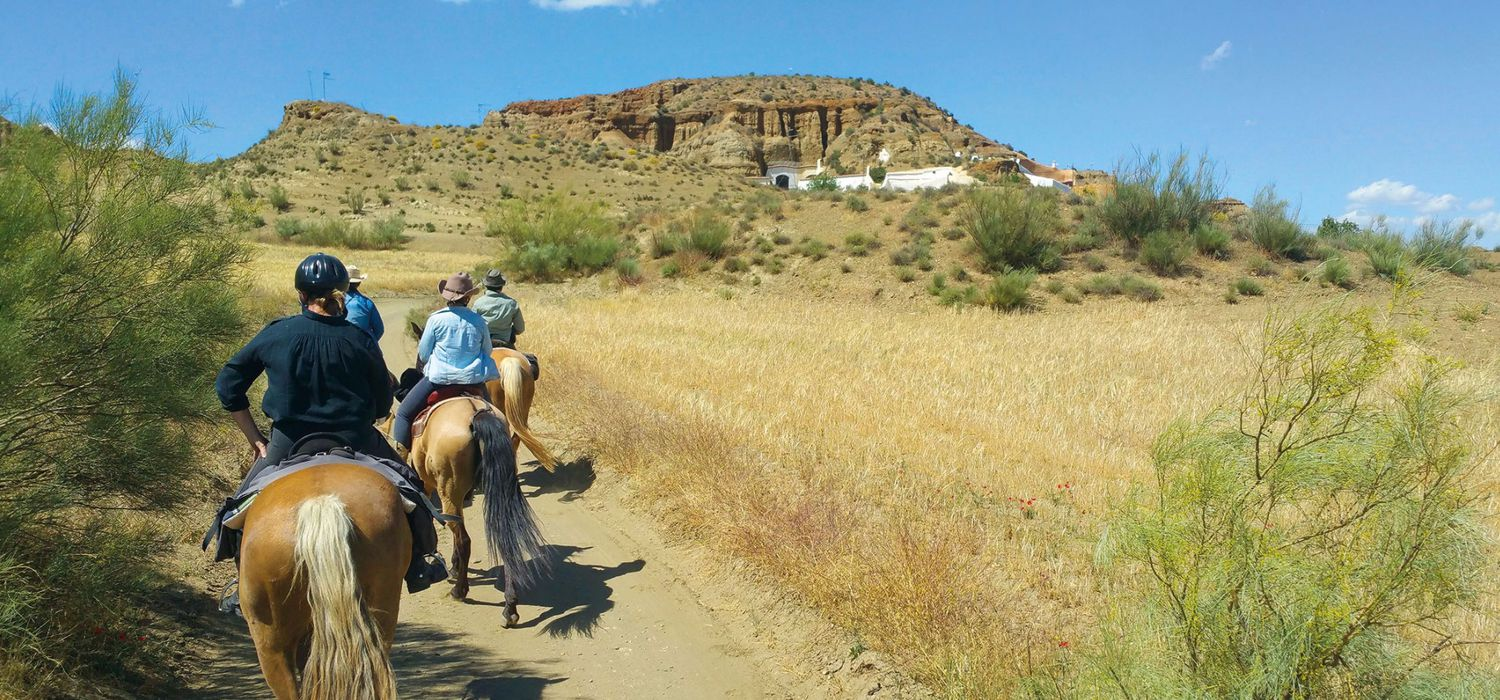 Photo from the Sierra Nevada Trails ride.