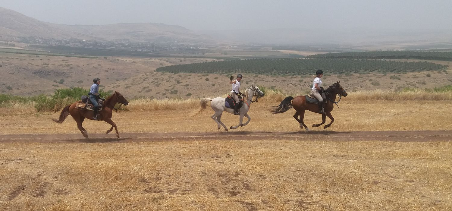 Photo from the Land of Galilee (Israel) ride.