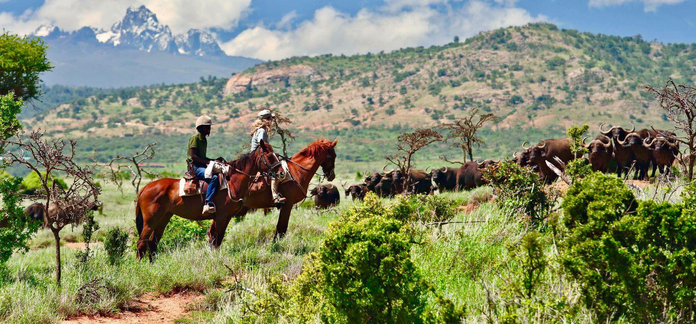Photo from the Borana ride.