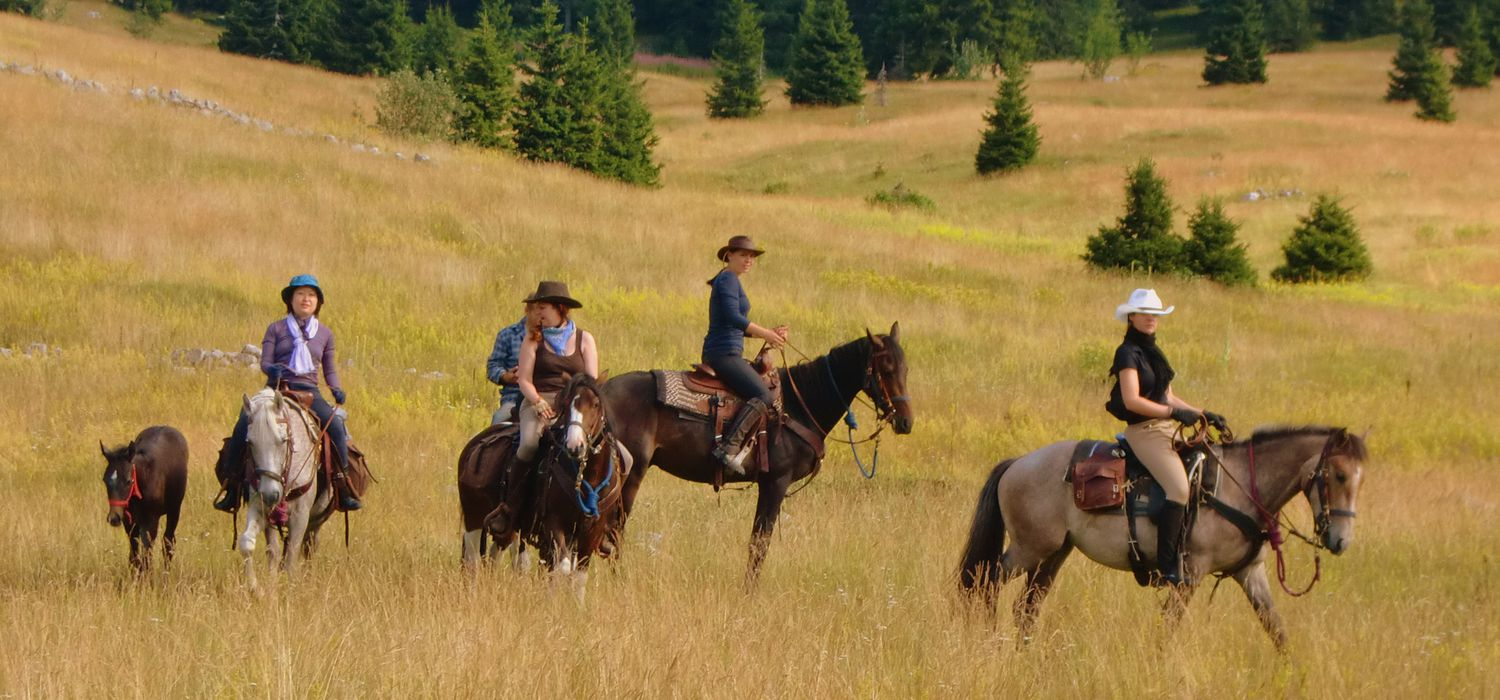 Photo from the Linden Tree Retreat & Ranch ride.