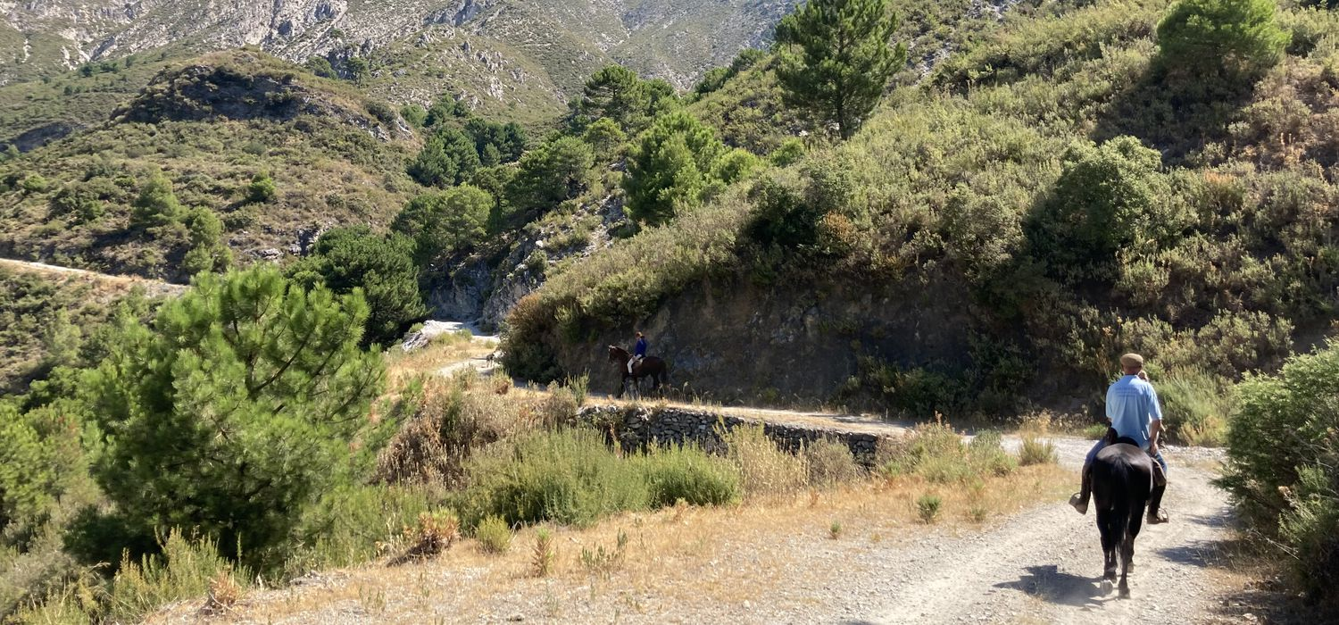 Photo from the Axarquia Mountain Hideaway ride.