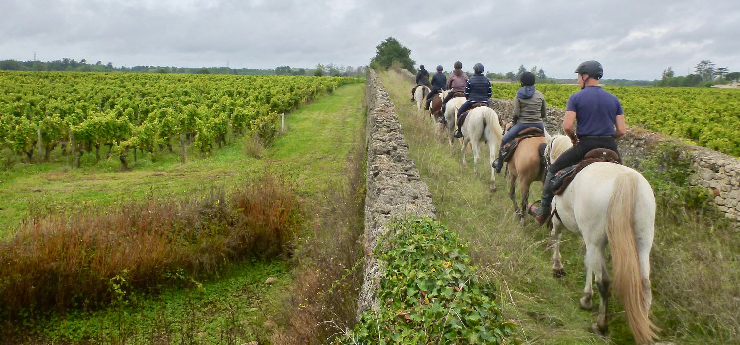 Photo from the Vineyards of Champagne (France) ride.