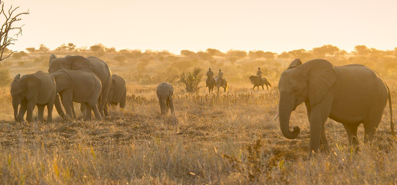 Photo from the Horizon Botswana ride.