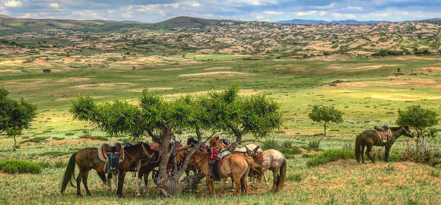 Photo from the Gobi and Grasslands Ride ride.