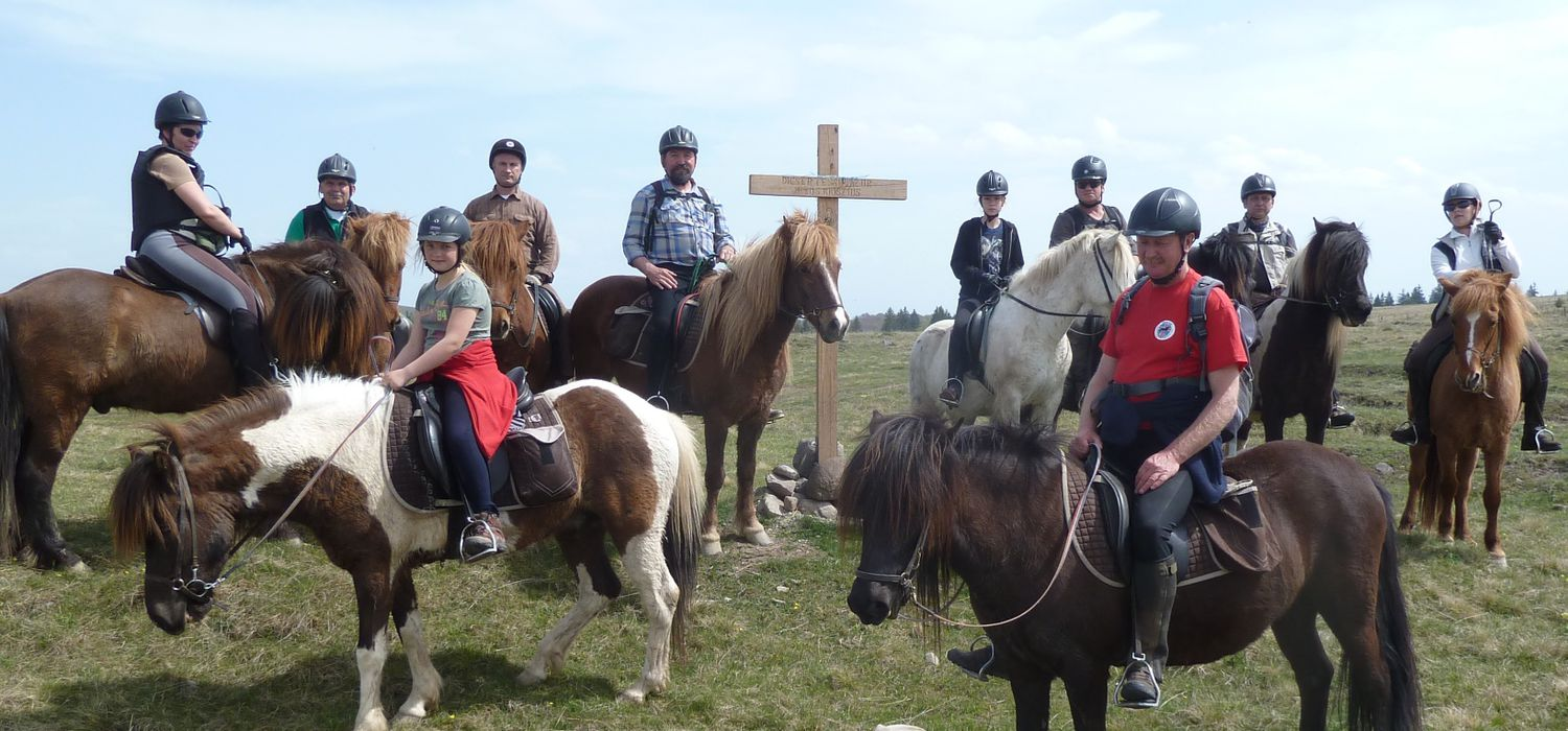Photo from the Icelandics in Carpathia ride.