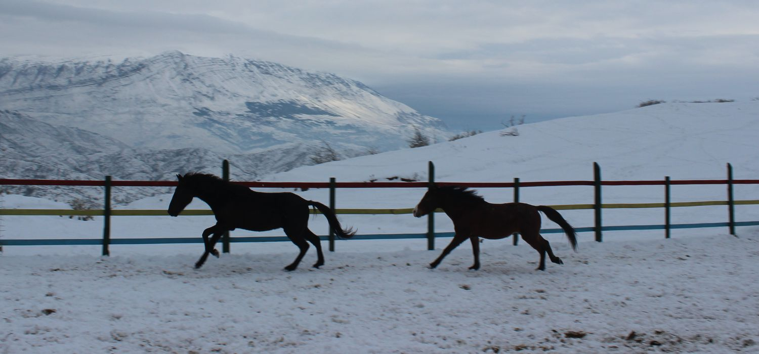 Photo from the Winter in Albania ride.