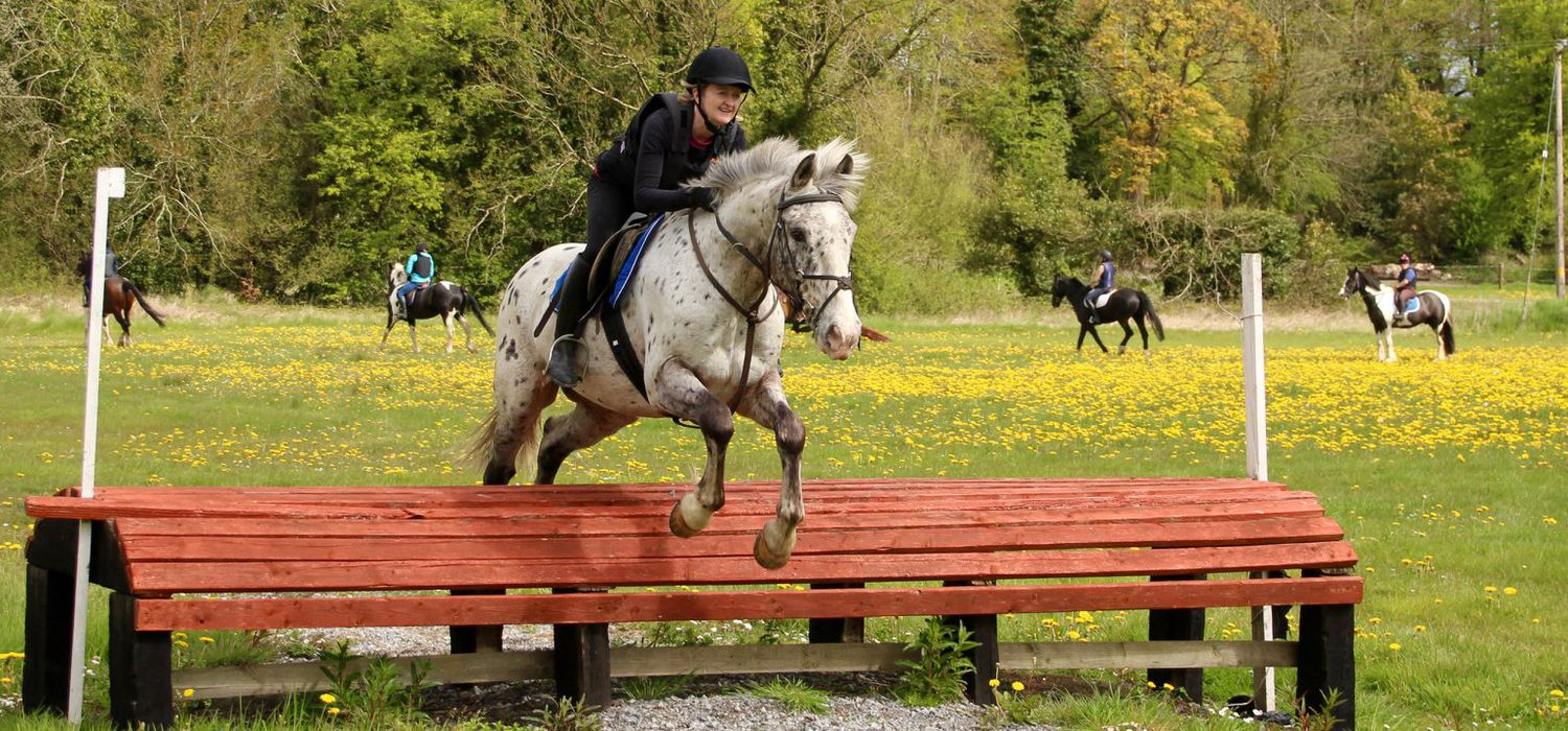 A view of the Flowerhill Equestrian ride in Ireland