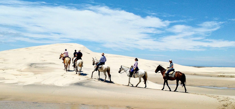Photo from the Lagoa do Peixe National Park ride.