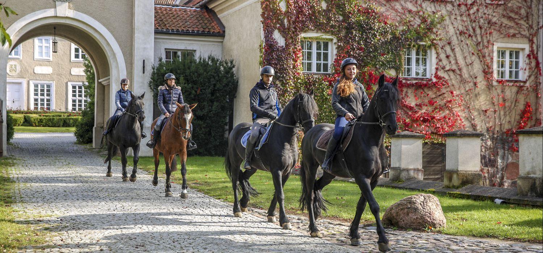 Photo from the Galiny Palace (Poland) ride.