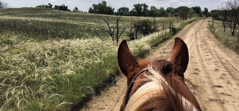 Photo from the Western Ranch  (El Bronco) ride.