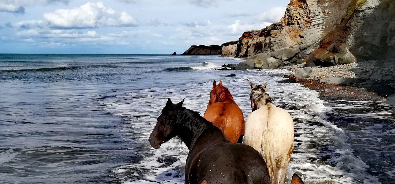Photo from the Tierra del Fuego ride.