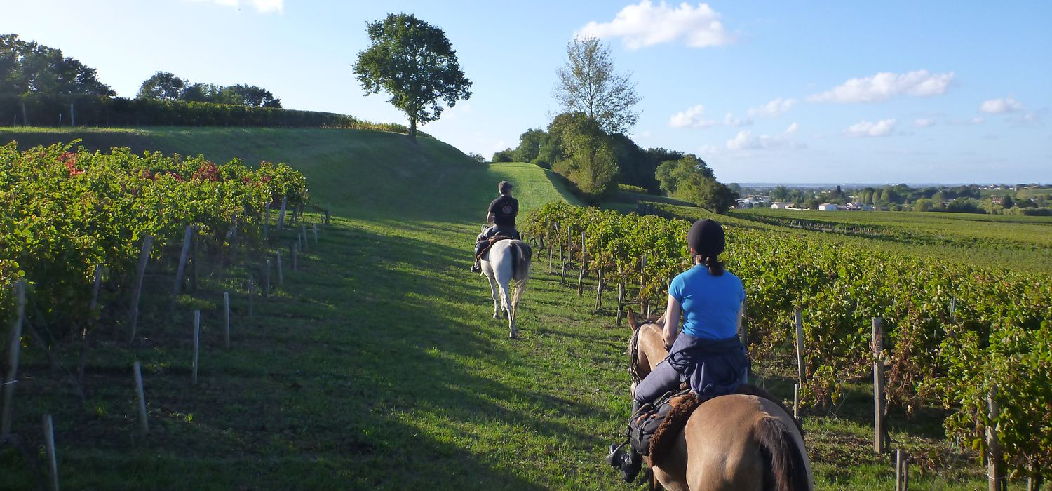 Photo from the Bordeaux Wines ride.