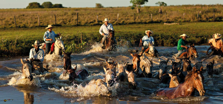 Photo from the Pantanal Safari ride.