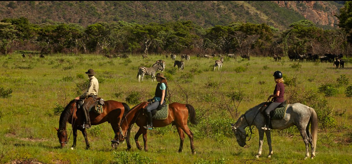Photo from the Waterberg Big Five Safari ride.