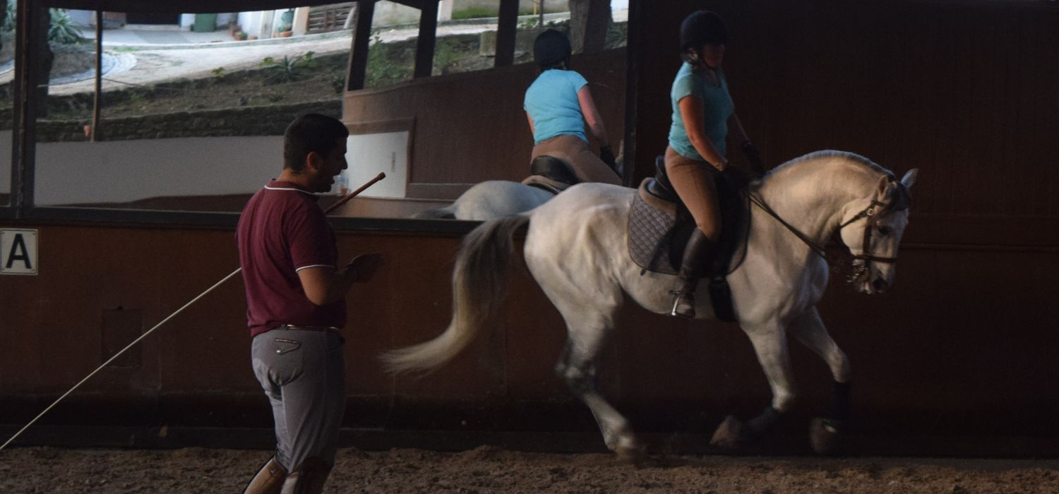 Photo from the Lusitano Dressage ride.
