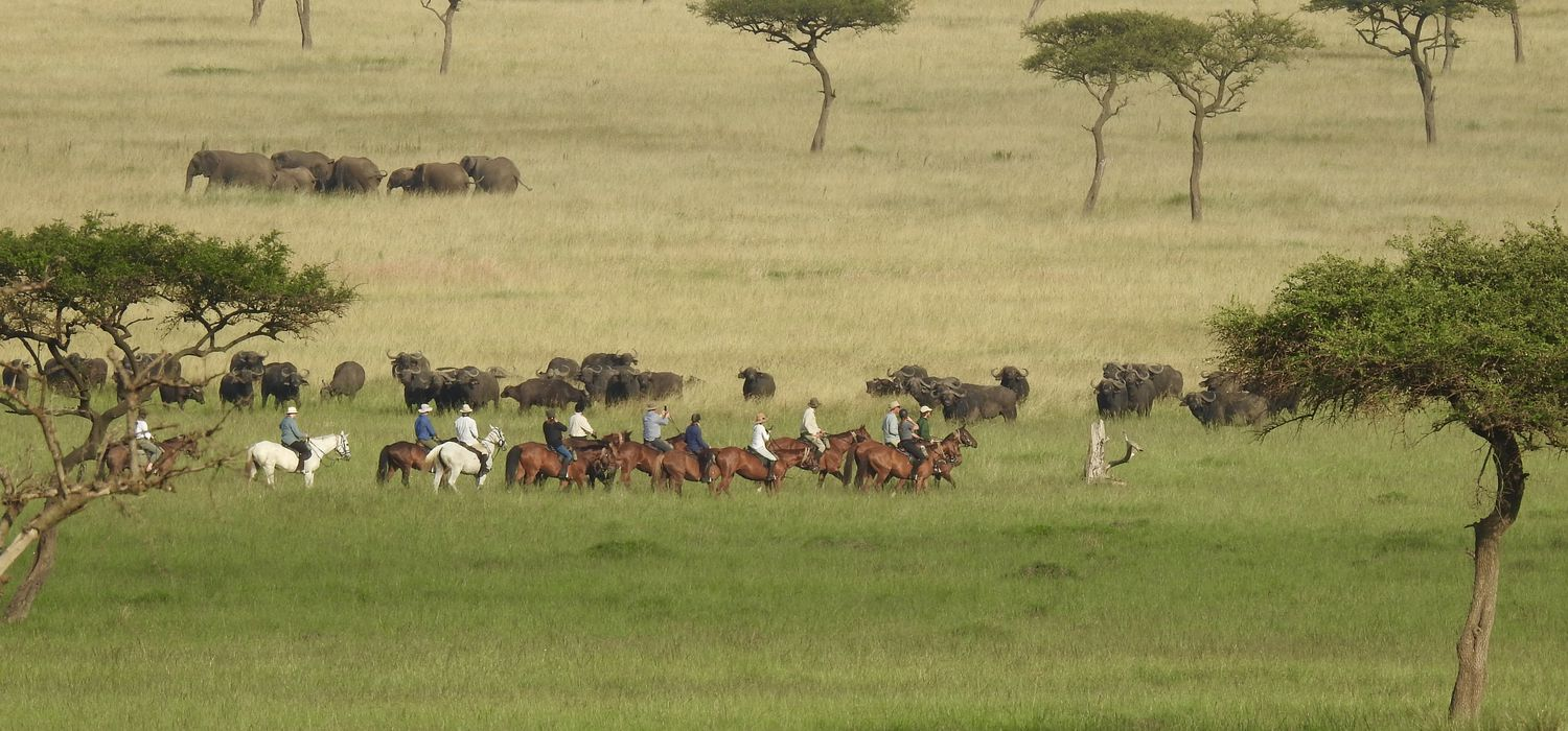 Photo from the Offbeat Safaris ride.