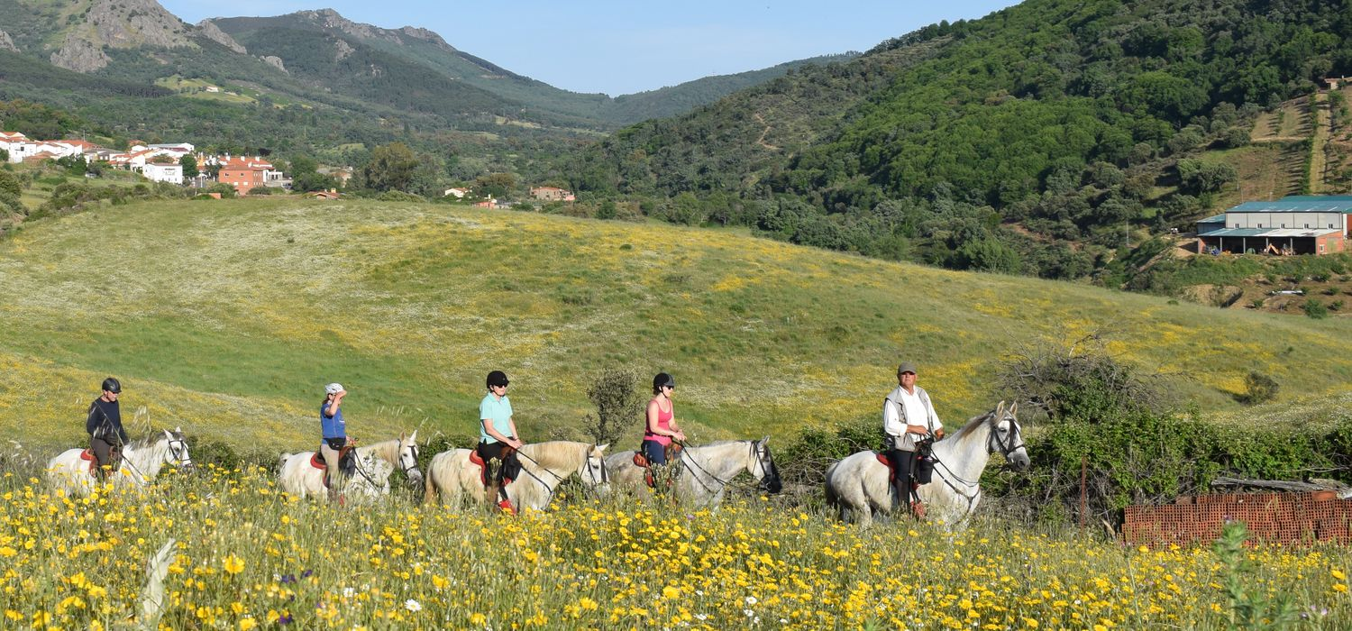 Photo from the Extremadura Trails ride.