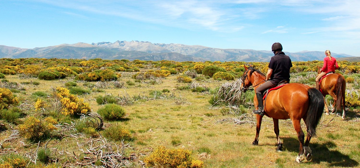 Photo from the Gredos Mountains (Spain) ride.