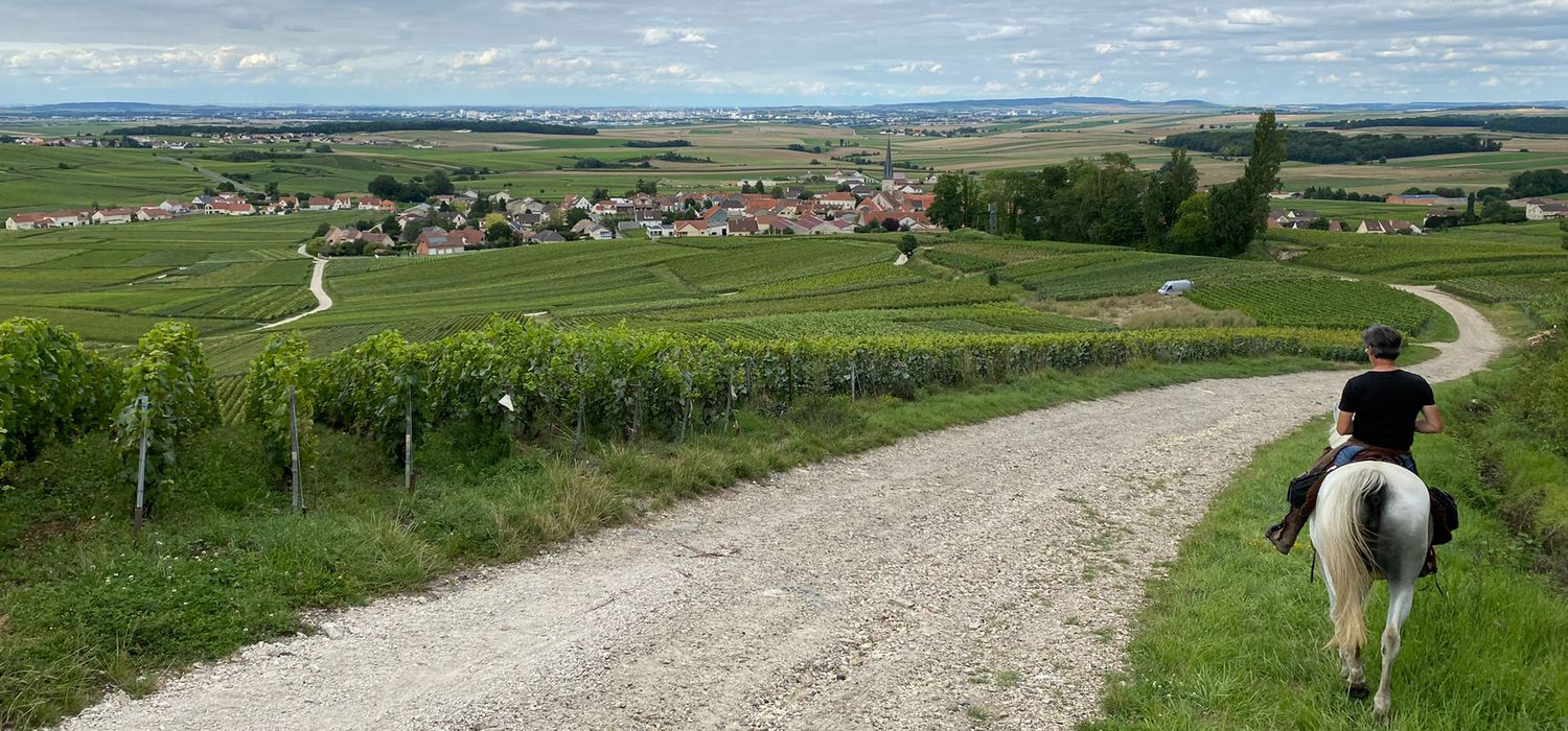 Photo from the Vineyards of Champagne ride.