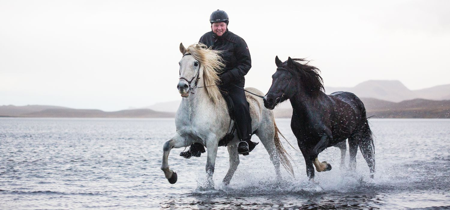 Photo from the Icelandic Horse Round Up ride.
