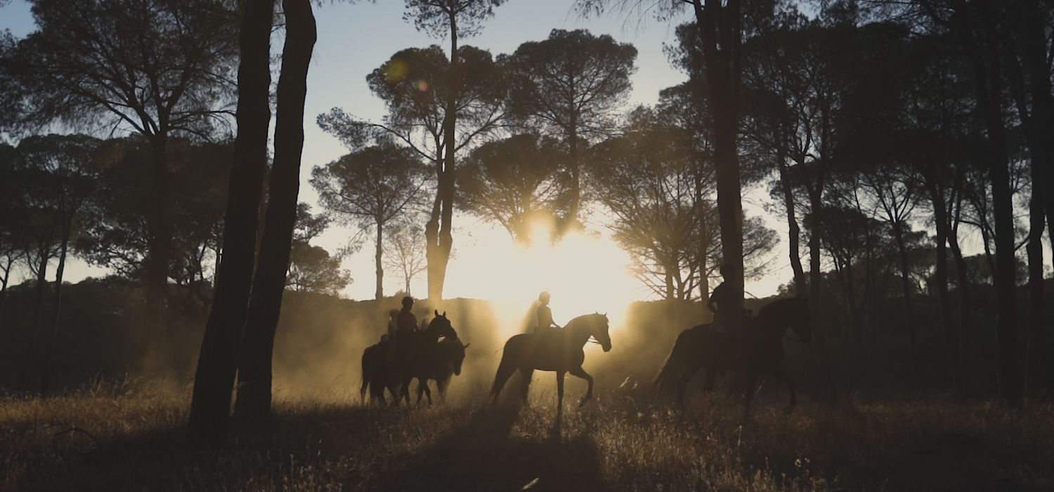 Photo from the Doñana Dressage & Trails ride.
