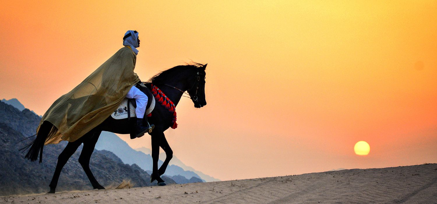 Photo from the Temples, Tombs and Beaches (Egypt) ride.