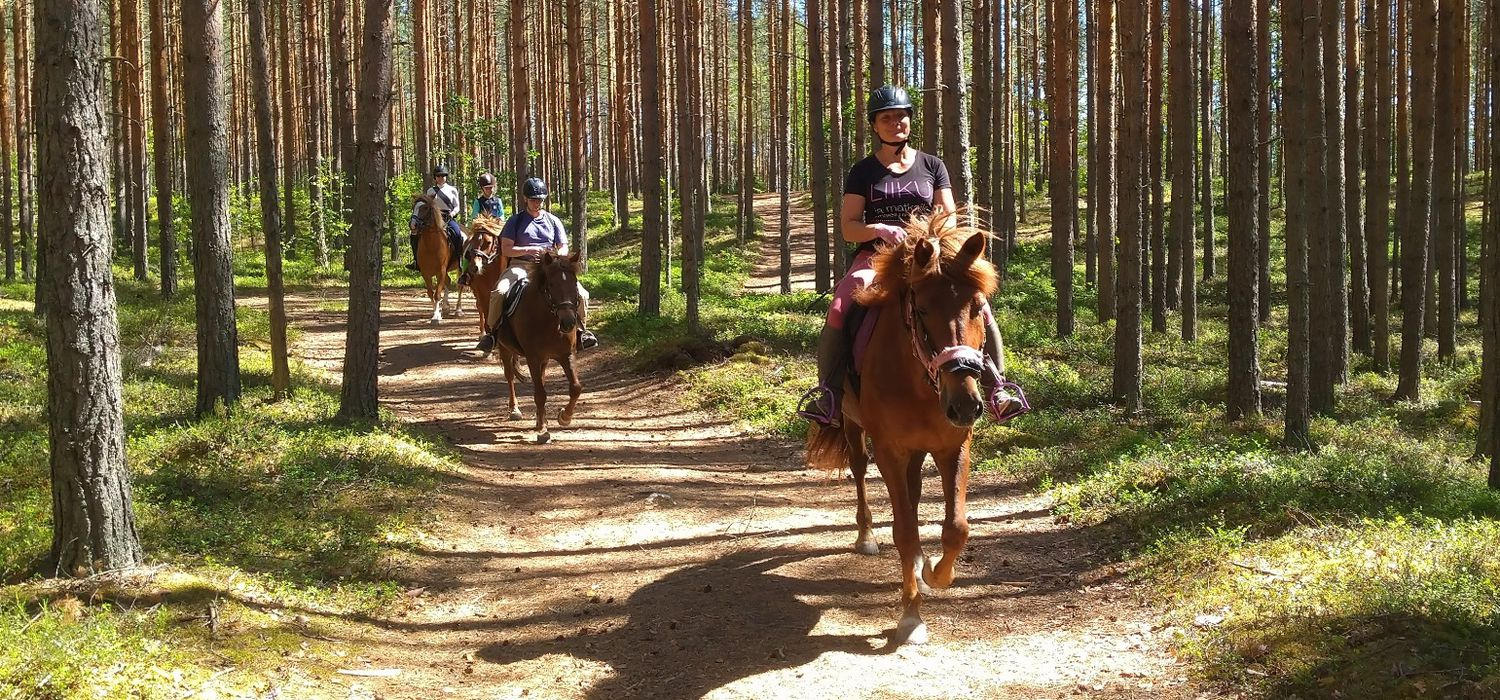 Photo from the Finnhorse Adventures ride.