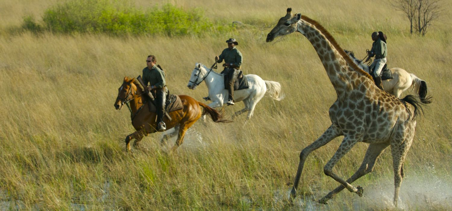 Photo from the African Horseback Safaris (Macatoo) ride.