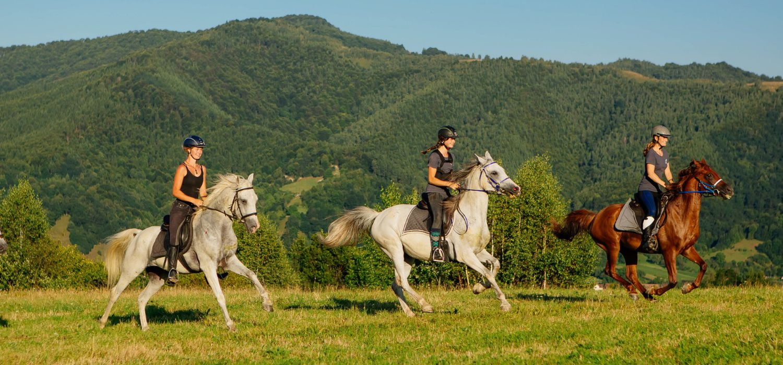 Photo from the Transylvania Trails (Equus Silvania) ride.