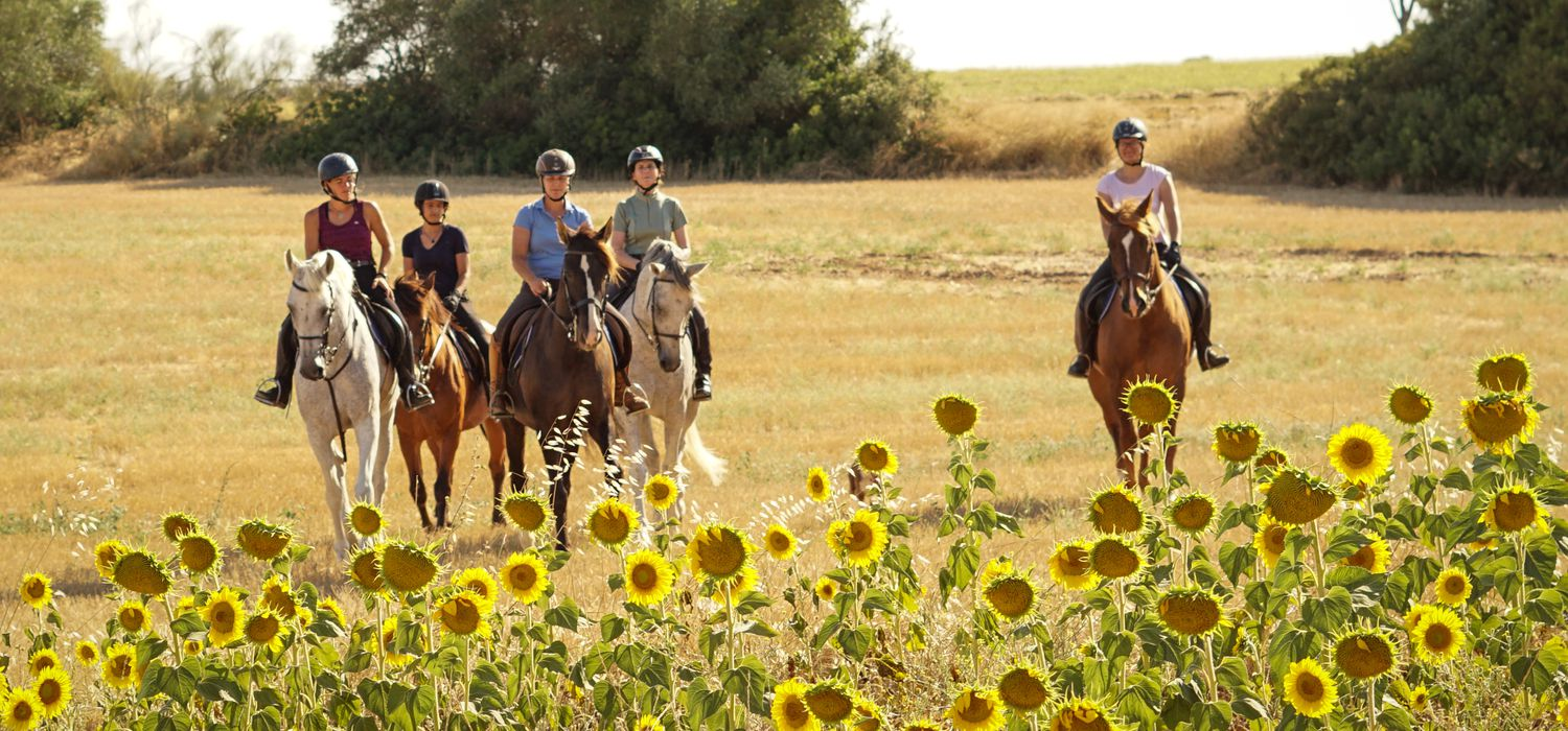 Photo from the Epona Dressage and Trails ride.