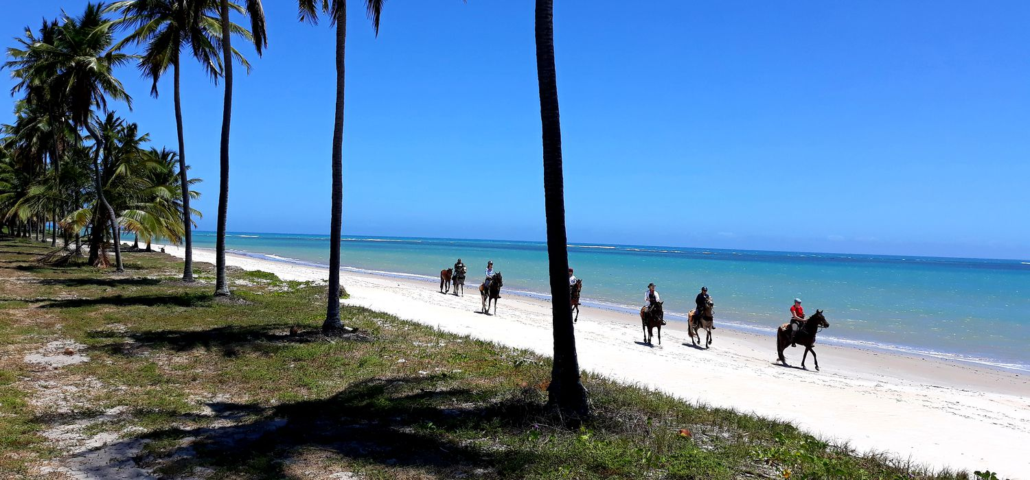 Photo from the Coconut Trail ride.