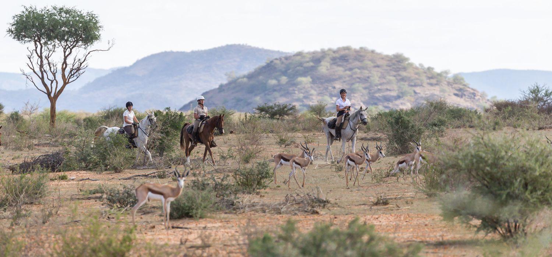 Photo from the Okapuka Horse Safaris ride.