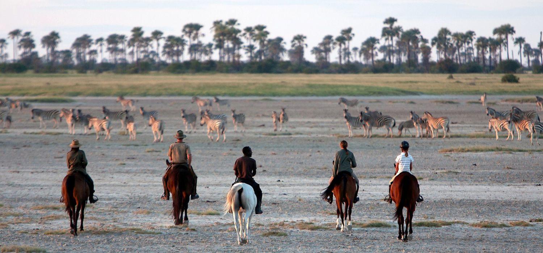 Photo from the Kalahari Ride (Ride Botswana) ride.