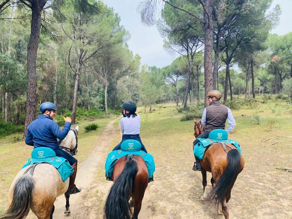 Doñana Trail itinerary.