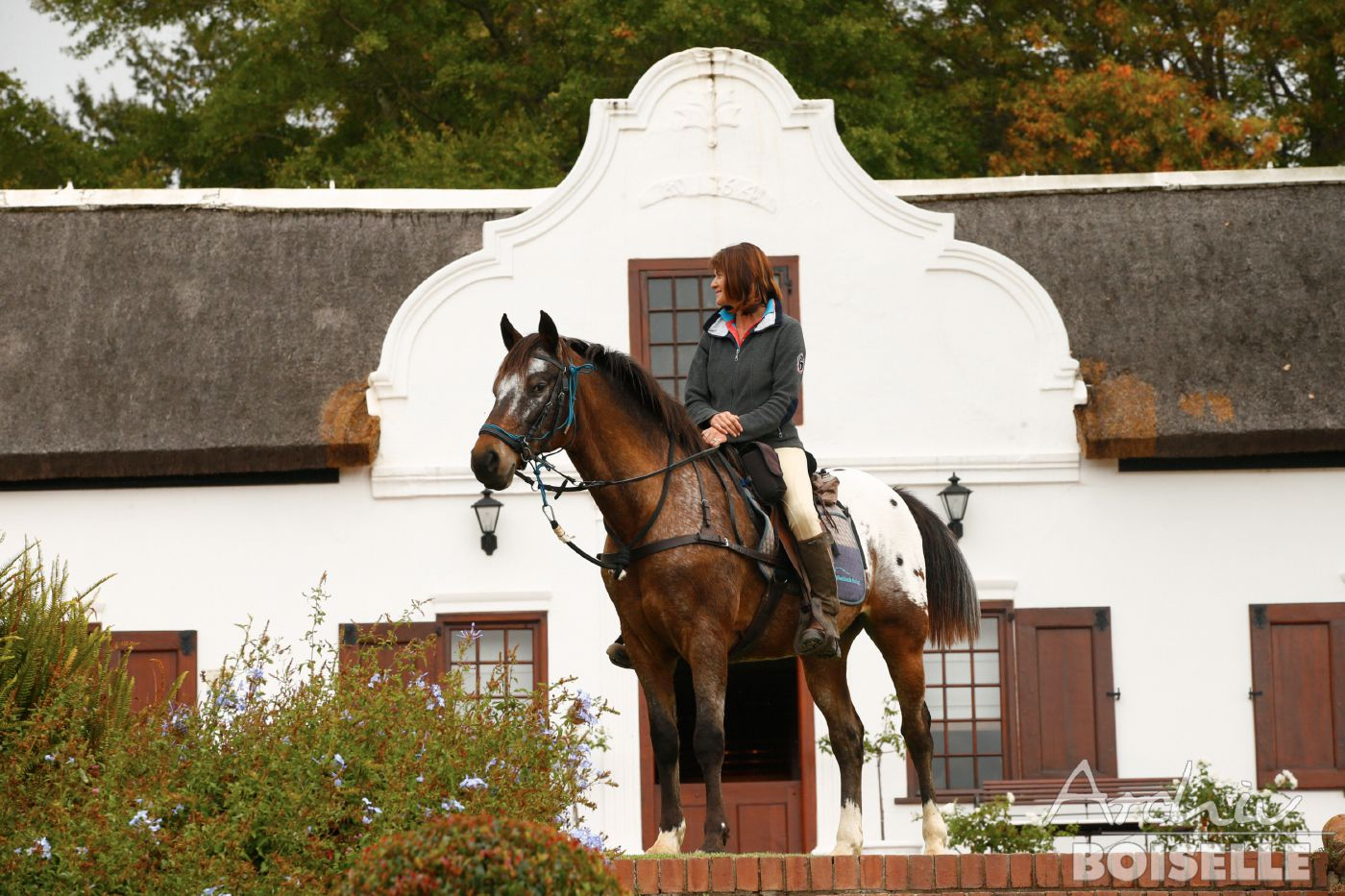 Horses and Wines itinerary.