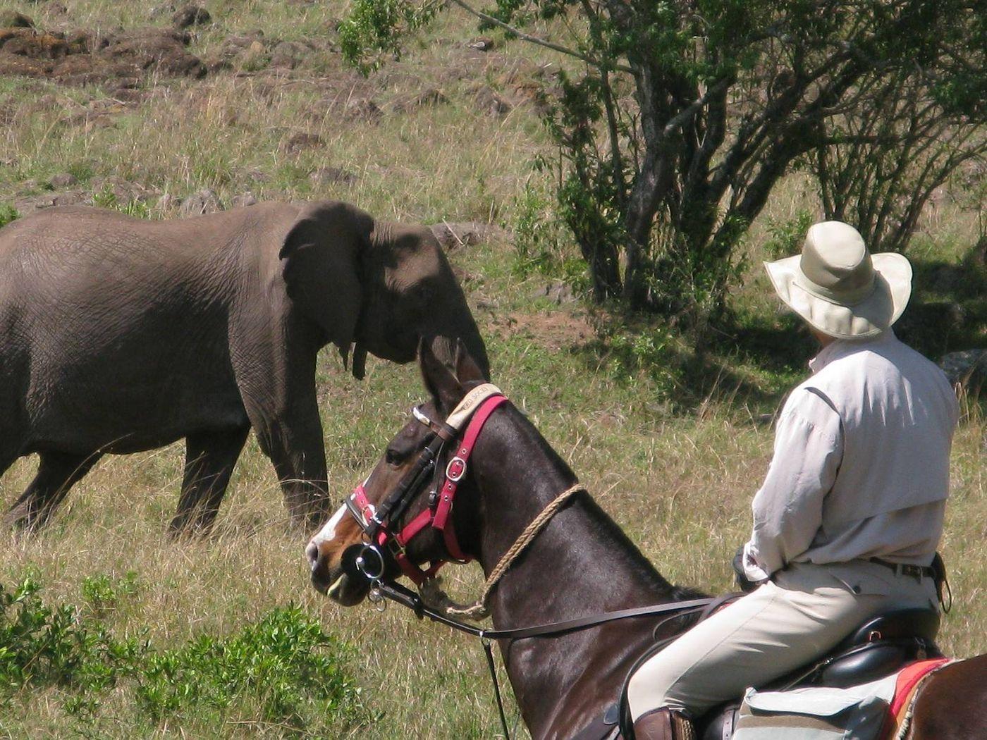 Masai Mara Ride (8 Nights) itinerary.
