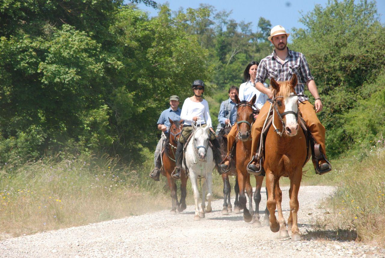 Farm Stay and Mini Trail Combination itinerary.