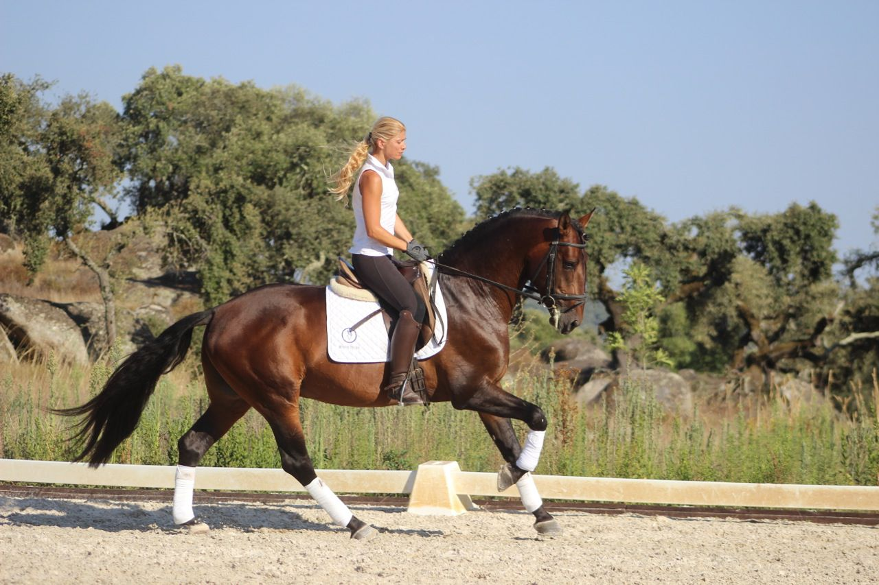 Dressage and Countryside Riding Combination itinerary.