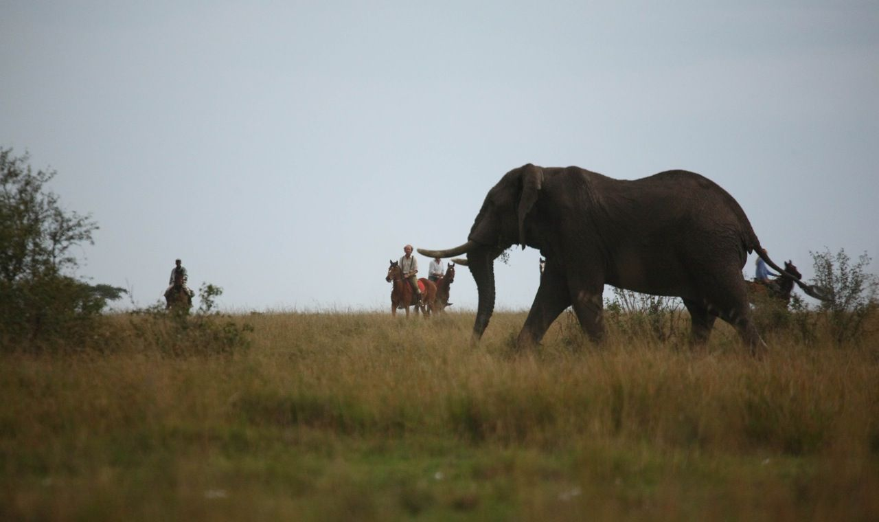 A Short Ride in the Mara (6 Nights) itinerary.