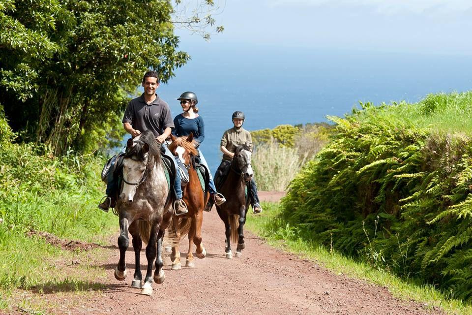 Faial Island Trail itinerary.