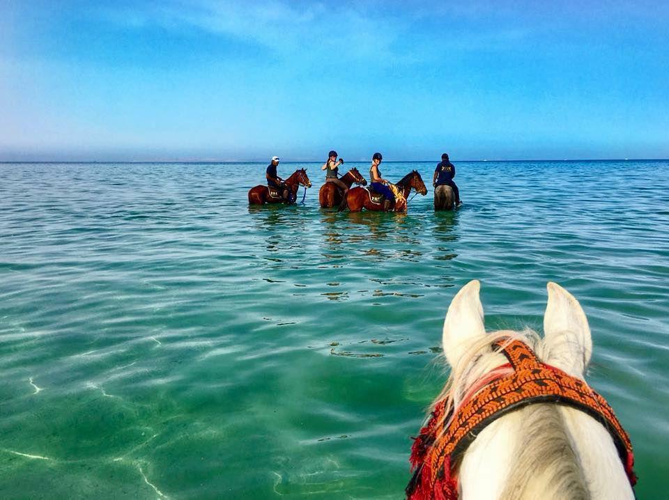Adventures of Luxor & Makadi Bay itinerary.