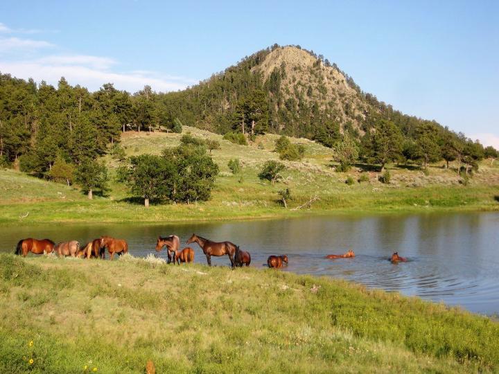 Black Hills Ranch (Wyoming) itinerary.