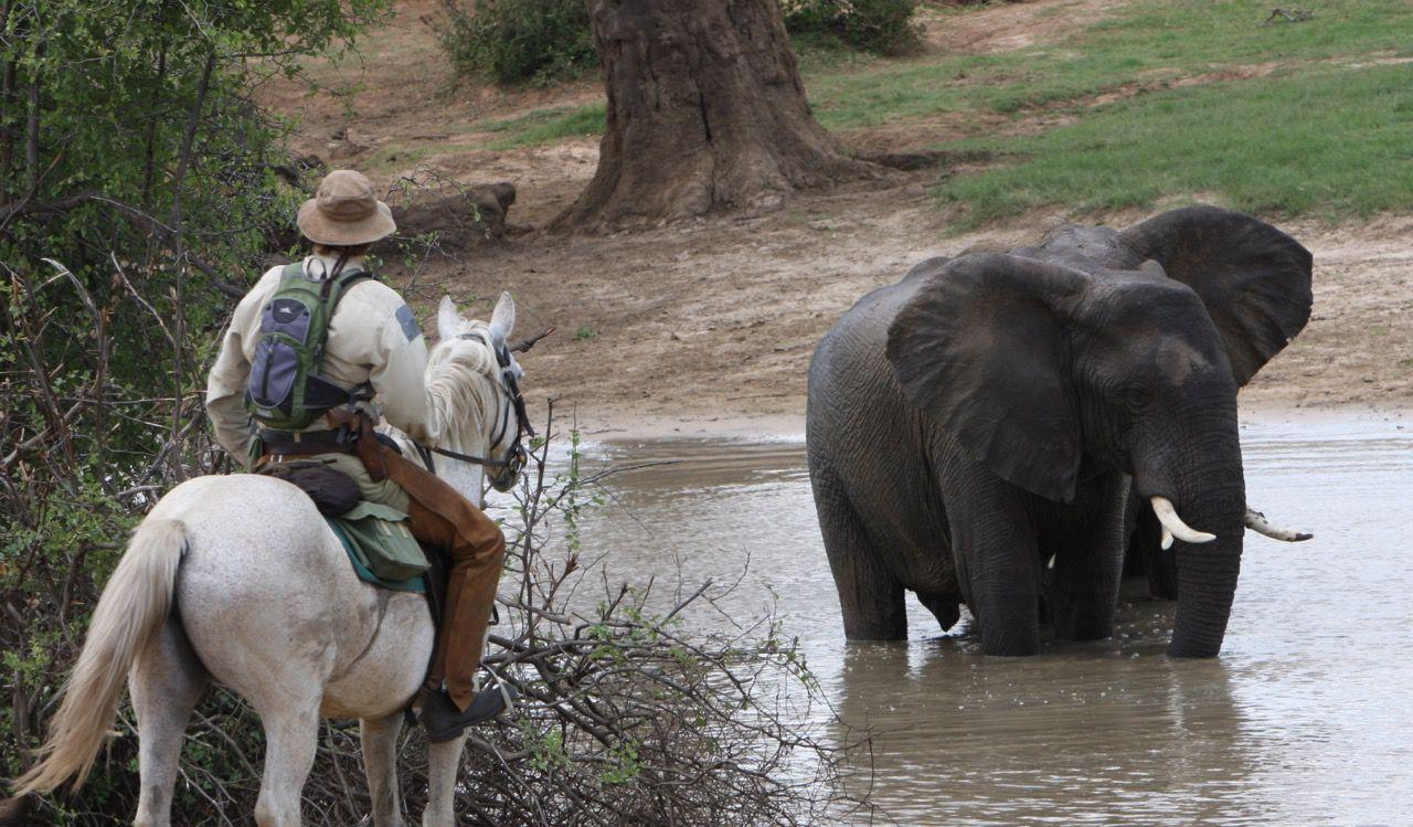 Hwange National Park Ride itinerary.