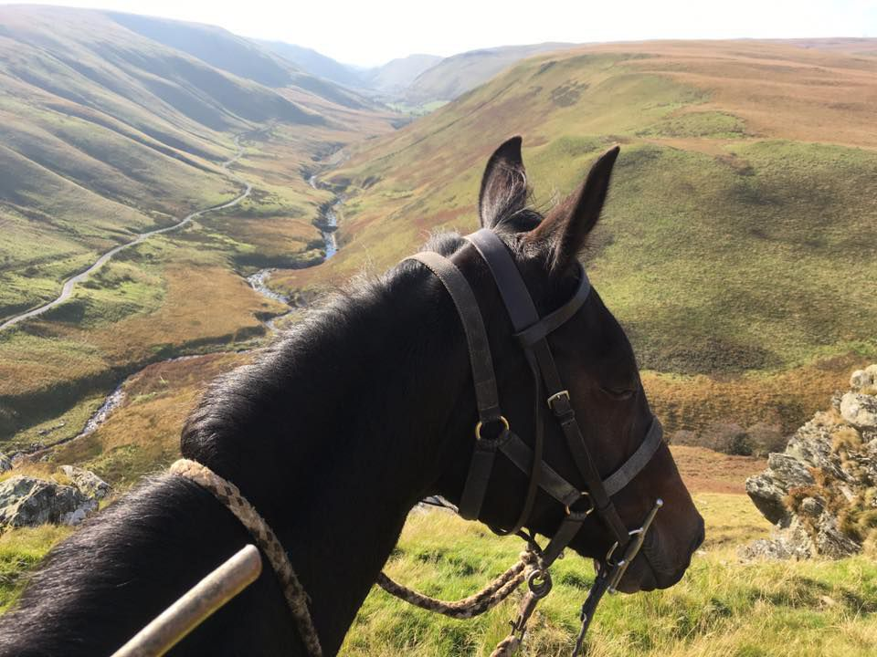 Trans Wales Trail itinerary.