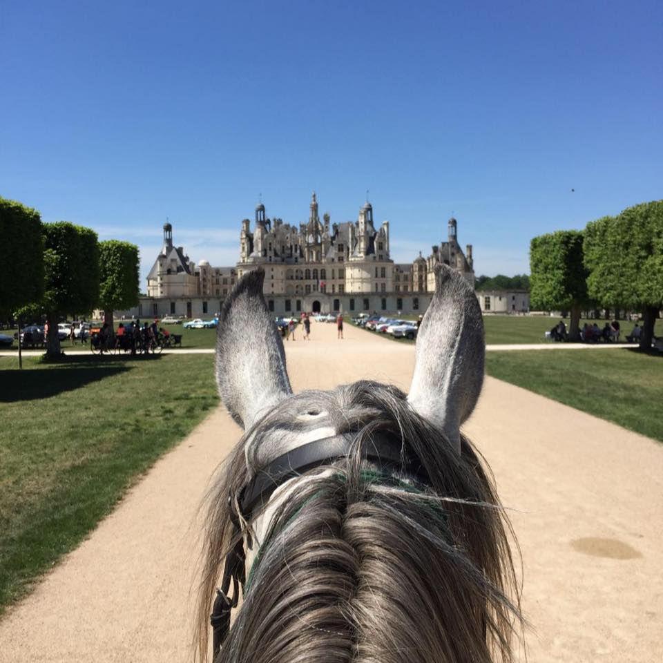 Loire Castle Short-Break itinerary.