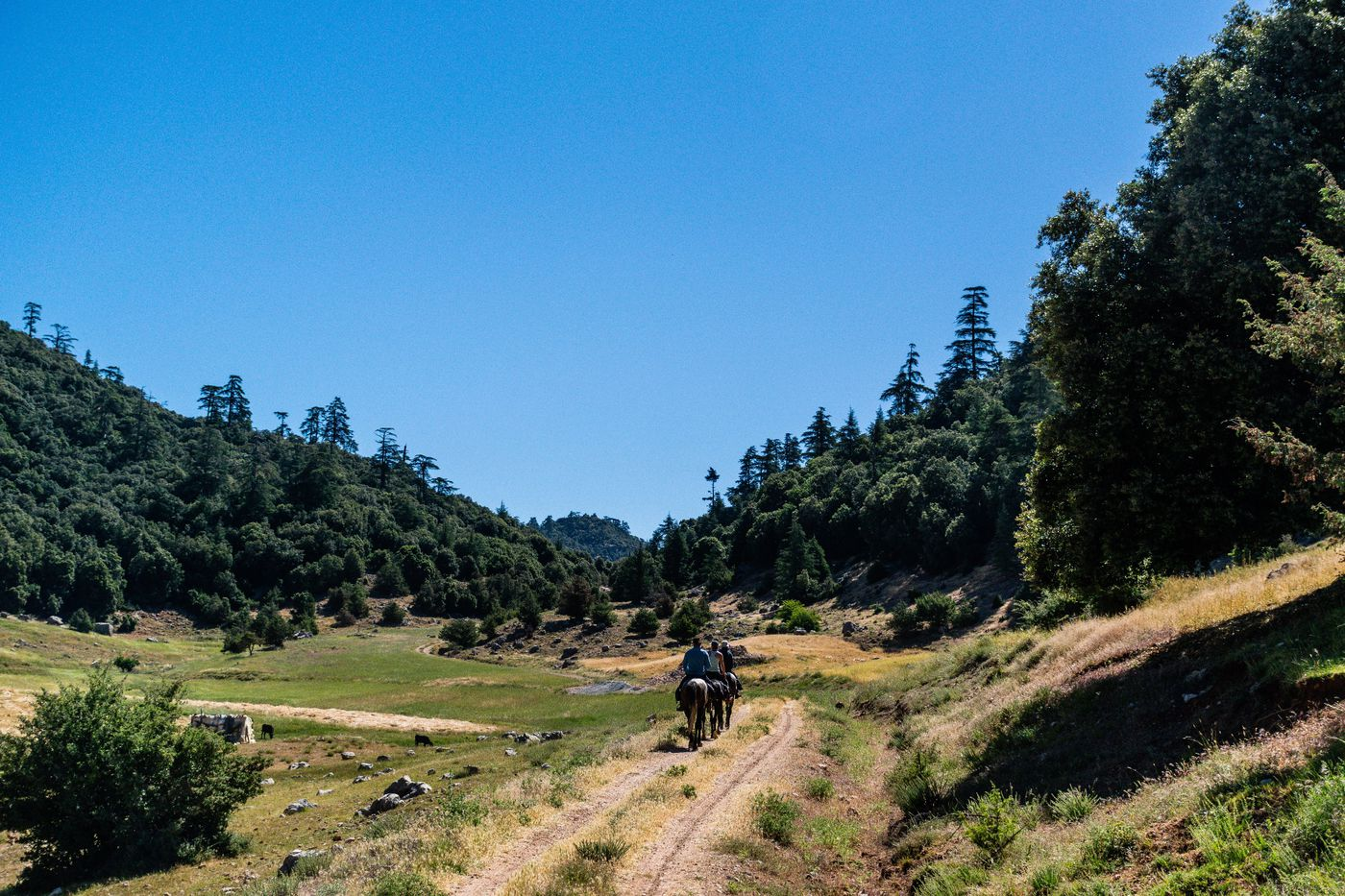 Siroua Saffron Trail itinerary.