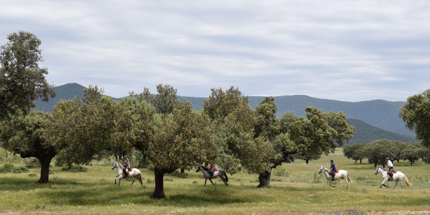 Extremadura Long Weekend itinerary.