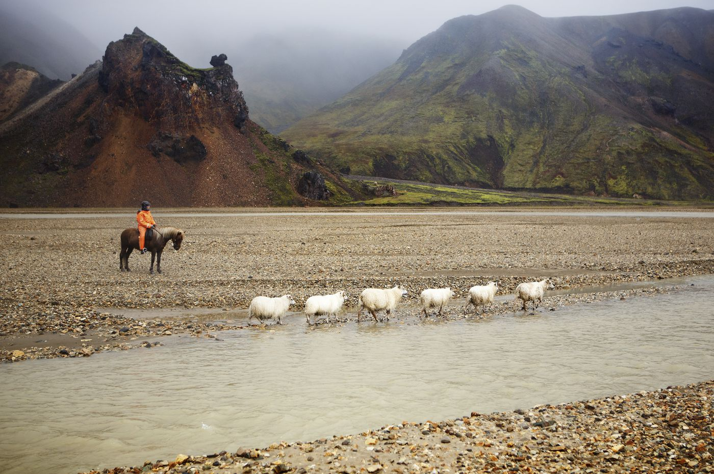 Sheep Round-Up Rangarvallaafrettur itinerary.