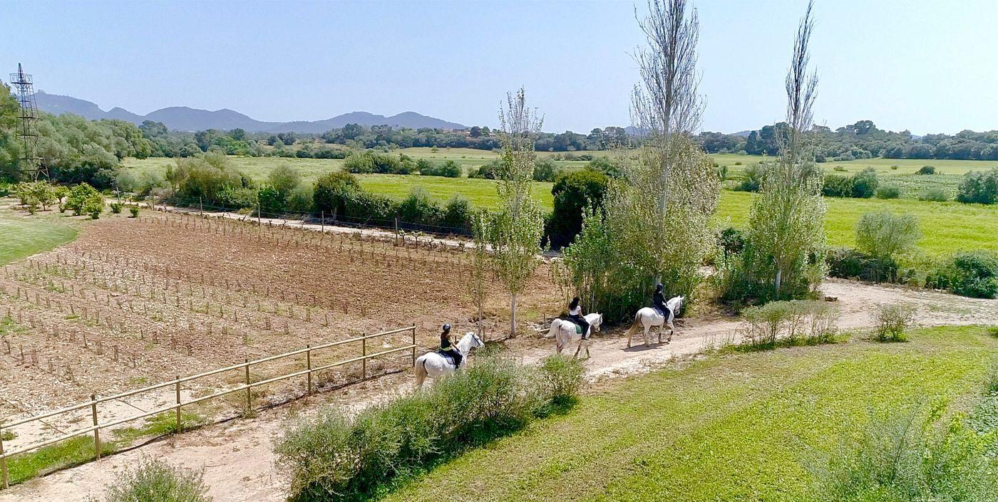 Mallorca Trails Programme itinerary.