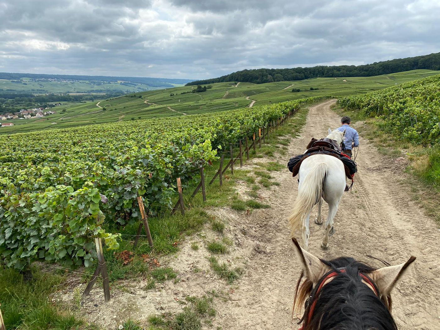 The Sparkling Trail Ride itinerary.
